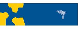 ZBIDF Logo